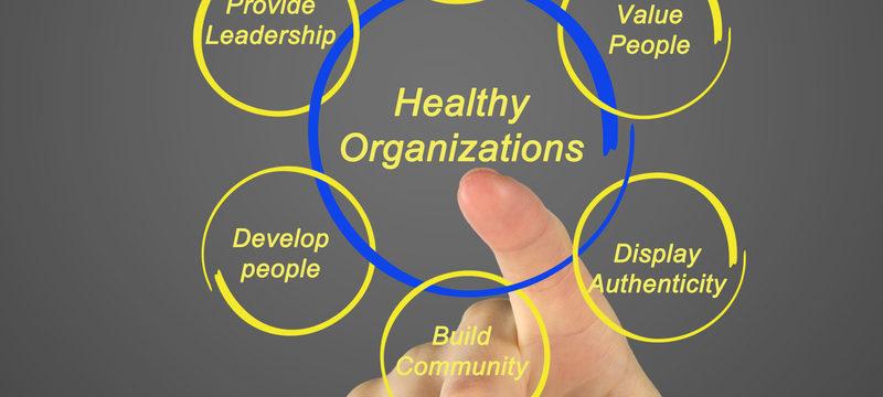 Healthy Organization